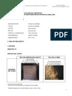 Informe 487-2012