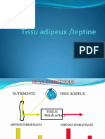Tissu_adipeux_leptine.pdf;filename_= UTF-8''Tissu adipeux leptine