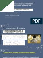 VALORIZACION DE CONCENTRADOS