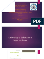 anatomiayfisiologia-180606041329