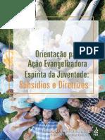 orientacao_a_acao_evangelizadora_espirita_da_juventude_-_subsidios_e_diretrizes_-_final_0