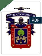 Juan Diego Navarro Zavala Amparo Juicio Concepto