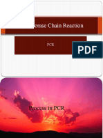 Polymerase Chain Reaction2