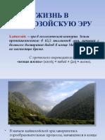 Zizn v Kaynozoyskuyu Eru