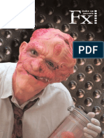 FX_2007