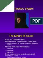 auditorysystem-100325110931-phpapp01