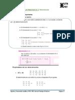 TRABAJO_PRÁCTICO_N°_2_Determinantes