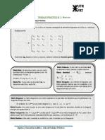 TRABAJO_PRÁCTICO_N°_1_Matrices (1)