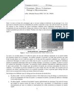 TP3 Céramique_ Masse Volumique, Frittage Et Microstructures