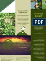 EL Uso indiscriminado de fertilizantes