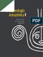 As Estatuetas Liticas Do Baixo Amazonas