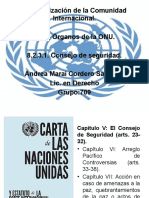2Consejo de Seguridad de Las NU (Maraí Cordero)