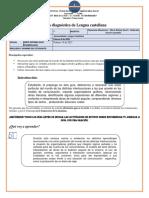Guía Diagnóstica de Séptimo 1