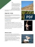 Clima Flora y Fauna de La Costa Sierra y Selva