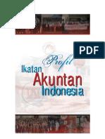 Profil IAI