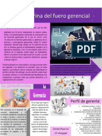 La doctrina del fuero gerencial y el Perfil del gerente en una economía globalizada