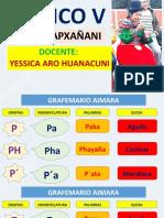 BASICO-V-AIMARA