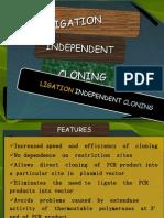 ligation independent cloning