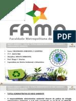 2016 1 Aula 06 Direito Ambiental.