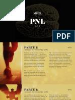 PNL_101