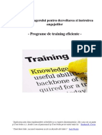 Ghidul Managerului Pentru Programe de Training Eficiente-Costi Balan