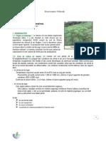 Projet Manioc Déborah