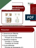 Patrones mendelianos de la herencia-2011.OK