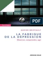 La Fabrique de La Dépression by Xavier Briffault