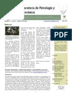 2007._Boletin_del_Laboratorio_de_Petrolo