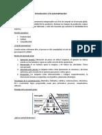 01 Introducción a la automatización-Resumen