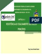 PPT_Resistência ao Cisalhamento_Cesar Godoi_UFSC2014