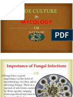 Slide Culture in Mycology