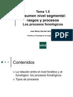 proceso fonicos
