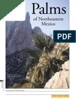 Palms of northeastern México