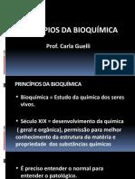 Aula 1 - Principios Bioquimica - Introdução