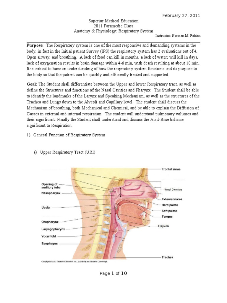 Hermosa Paramedic Anatomy And Physiology Study Guide Imagen ...