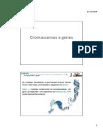 O2. PPT - Cromossomas e Genes
