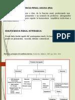 insificiencia renal parenquimatosa