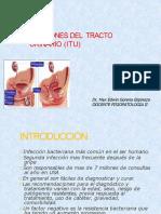 2.INFECCION URINARIA