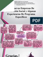 Mapa Conceptual Las Nuevas Empresas de Producción Social y Algunas Experiencias de Programa Específicos