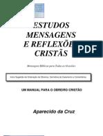 Livro eBook Estudos Mensagens e Reflexoes Cristas