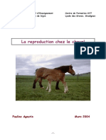 ReproductionChezLeCheval (1)