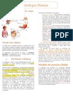 Palestra Cells e Histology