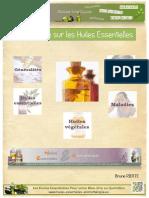 291669758 Guide Huiles Essentielles