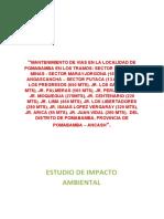 ESTUDIO_DE_IMPACTO_AMBIENTAL POMA