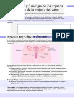 Aparatos reproductor femenino y masculino