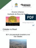 ANÁLISE-DE-RISCO-DE-QUEDA-DE-ÁRVORES-BRAZOLIN