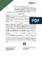FORMATO DE ASIGNACION NO CONSTITUTIVA JUAN CAMILO ESCOBAR