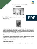 Historia, evolución, valores, principales reglas y fundamentos técnicos del voleibol
