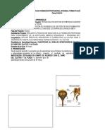 Guia de Aprendizaje N. 2 PLAGAS (anatomia)_PdfToExcel